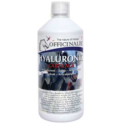 Hyaluronic Cartilage