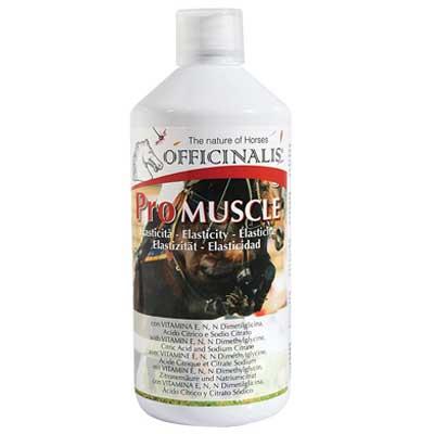 Pro Muscle