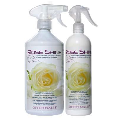 Shampoo Secco Rose Shine